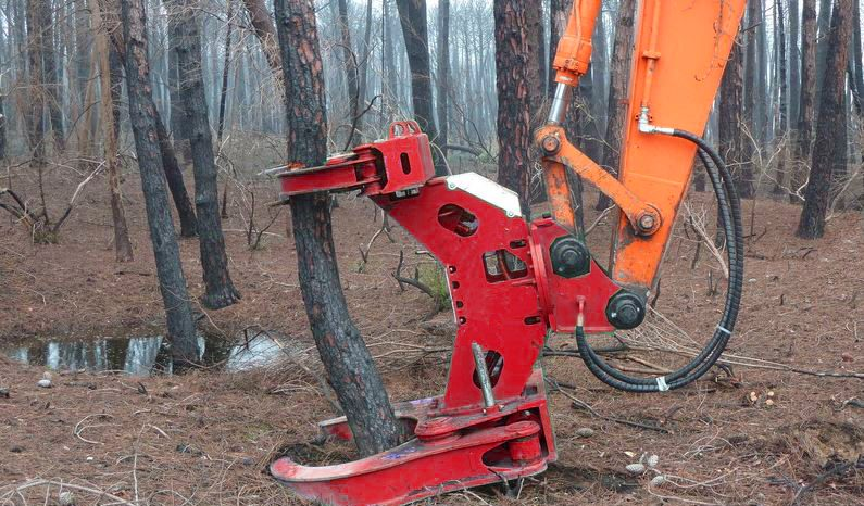 Tree Shears full