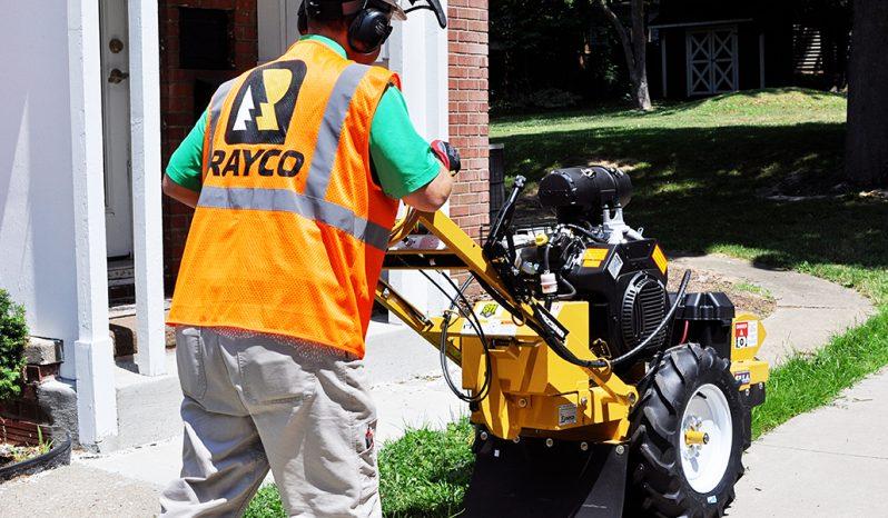 2020 Rayco RG25HD full